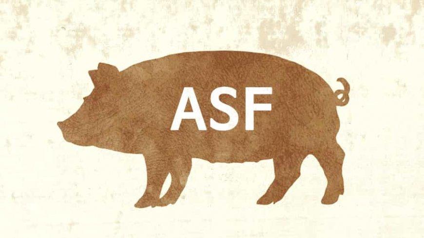 ZBIÓR ZALECEŃ OBOWIĄZUJĄCYCH W STREFACH RESTRYKCJI ZWIĄZANYCH Z WYSTĄPIENIEM ASF