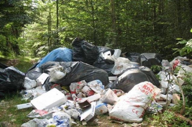 Zgłoś nielegalne postępowanie z odpadami