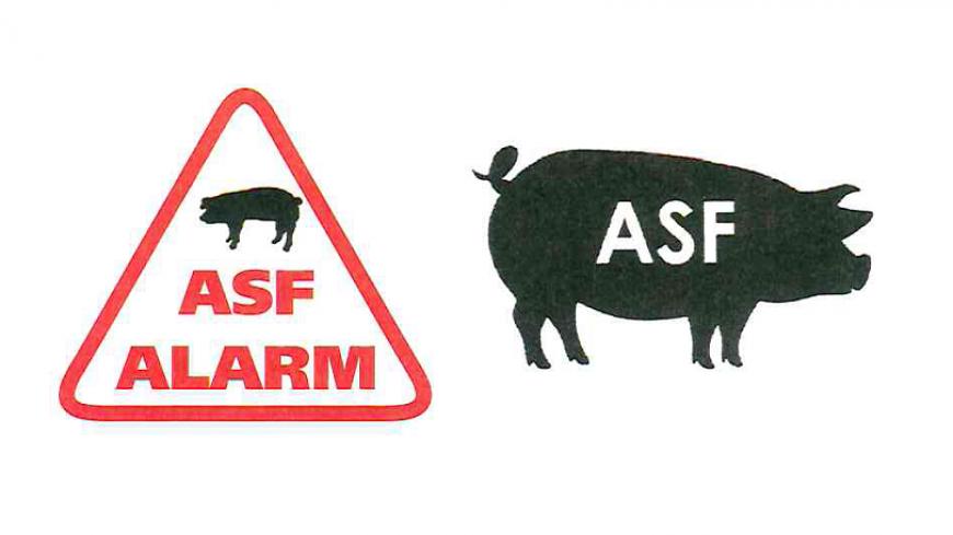 Spotkanie informacyjne w związku ze zwalczaniem ASF